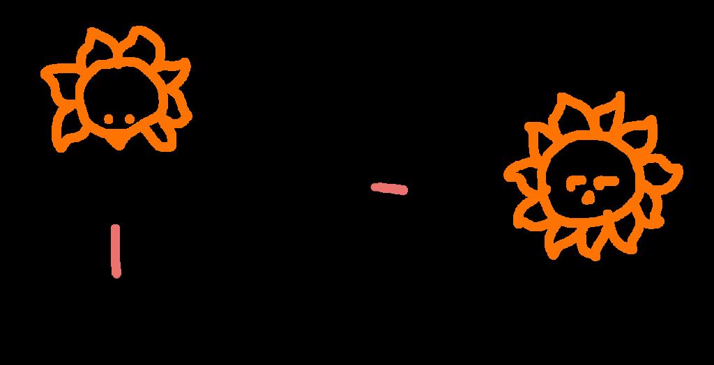 陽母音と陰母音についての説明