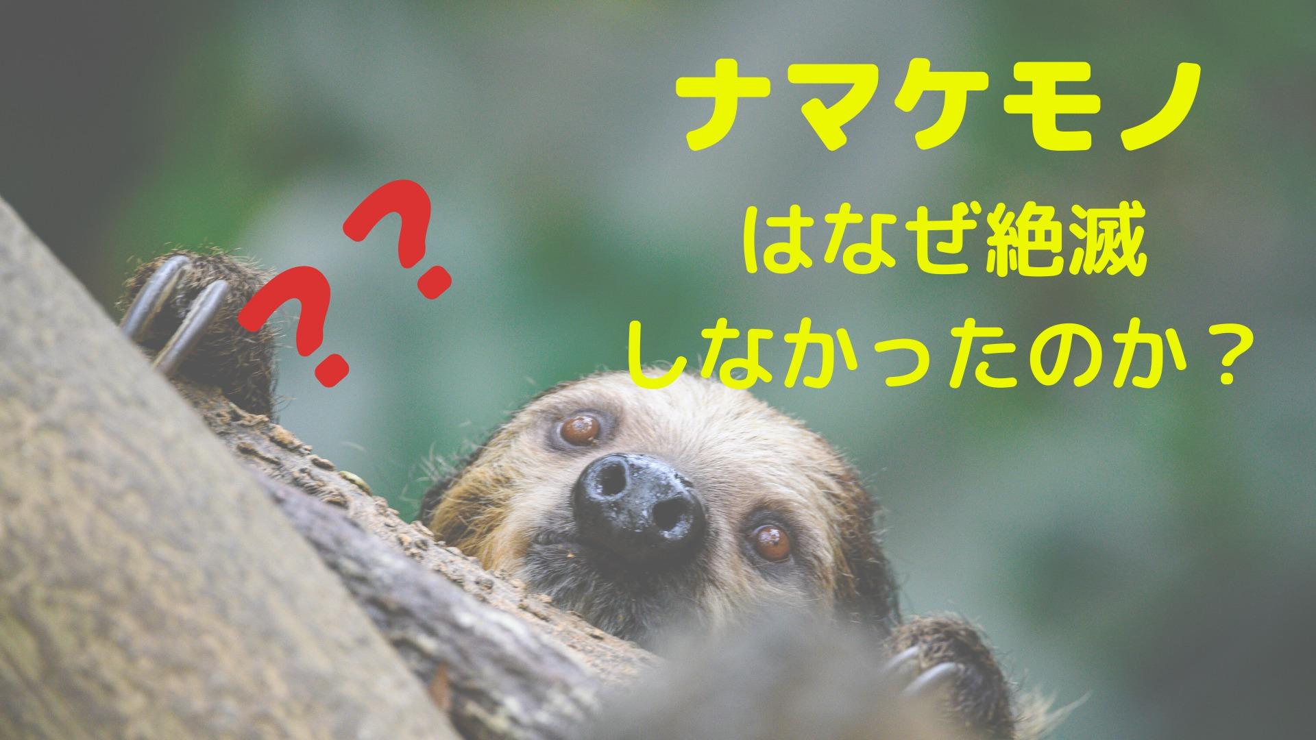 【虫食い韓国語3】ナマケモノ[나무늘보]はなぜ絶滅しなかった?
